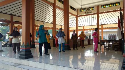 Senam Lansia, Pelayanan Kesehatan Bagi Kaum Lansia