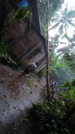 Lagi Hujan Dengan Intensitas Tinggi Sebabkan Pohon Tumbang